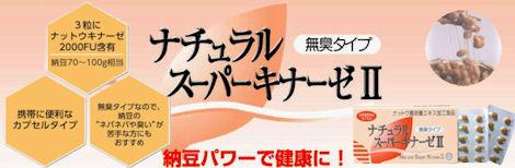 ナットウキナーゼ Natto Kinase